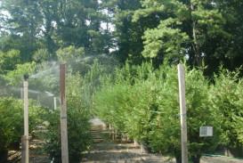 Irrigation Installation in Atlanta Georgia (2)